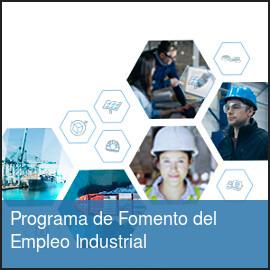Web Del Servicio Andaluz De Empleo Consejería De Empleo